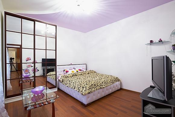 Квартира возле Оперного театра, 1-комнатная (21087), 001