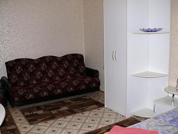 Excellent apartment, Studio (66383), 003