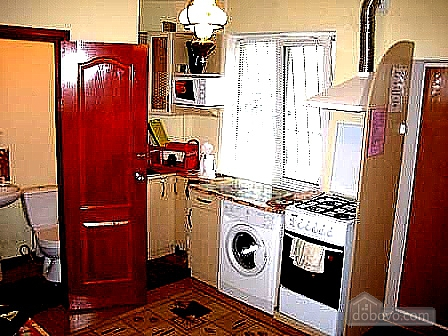 Nice apartment with renovation, Una Camera (75659), 001