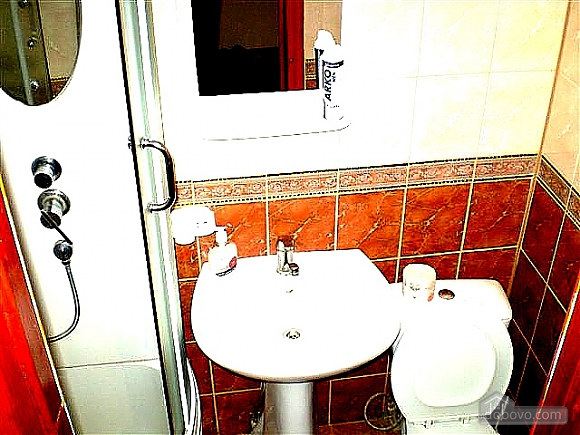 Nice apartment with renovation, Un chambre (75659), 013