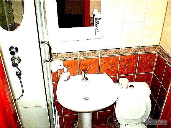 Хороша квартира з ремонтом, 2-кімнатна (75659), 013