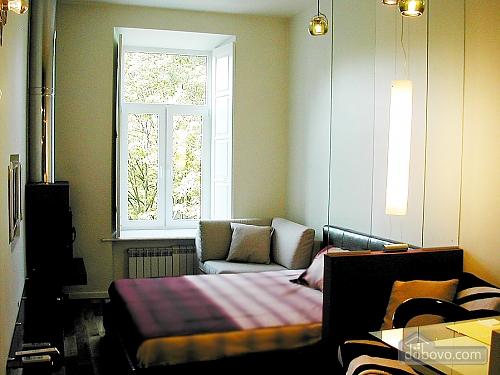 Comfortable apartment, Monolocale (31484), 001