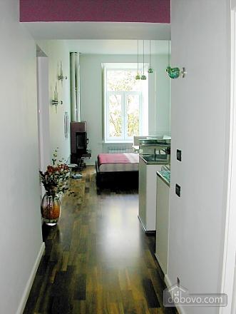 Comfortable apartment, Monolocale (31484), 007