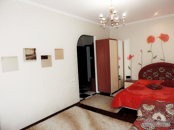 Apartment after the renovation, Studio (31813), 007