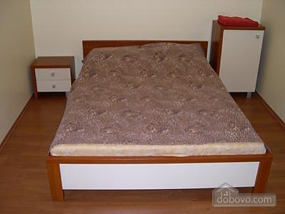 Apartment on Velyka Vasylkivska, Two Bedroom (76846), 001