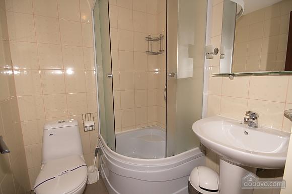 Современные апартаменты, 1-комнатная (45580), 008