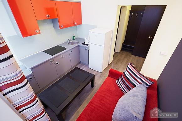 Apartment on Fedkovicha, Monolocale (68954), 002