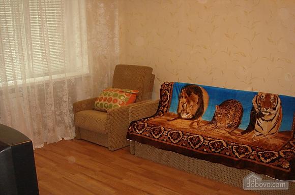 Apartment on Pechersk, Studio (46965), 001