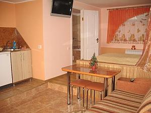 Квартира-студия в частном доме, 1-комнатная, 001