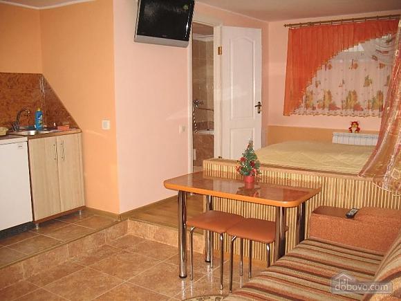 Квартира в приватному будинку, 1-кімнатна (93975), 001