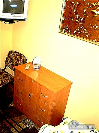 Excellent apartment with WI-FI, One Bedroom (49733), 015