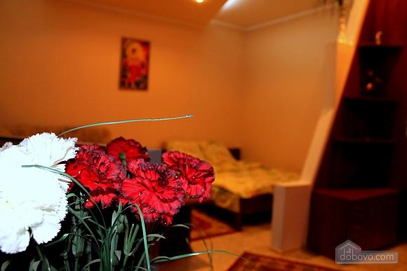 Апартаменты в историческом центре, 1-комнатная (72381), 003