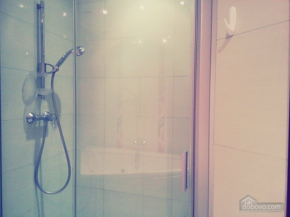 Квартира в центре Киева, 2х-комнатная (96611), 008