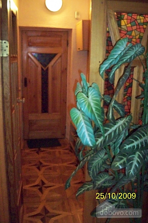 Cozy apartment on the Embarkment, Monolocale (33413), 004