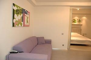 Сімейні апартаменти з однією спальнею, гідромасажною ванною, кухнею та диваном-ліжком, 2-кімнатна, 001