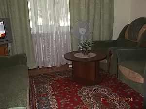 Nice clean apartment near Alexandria Park, Studio, 001