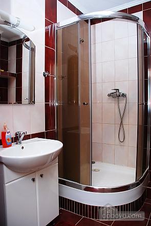 Luxury apartment on Pozniaky, Studio (16171), 010