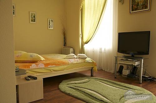 Apartment in the city center, Studio (10550), 001