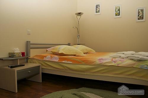 Apartment in the city center, Studio (10550), 002