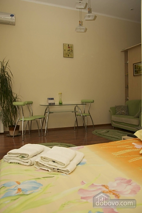 Apartment in the city center, Studio (10550), 003