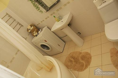 Apartment in the city center, Studio (10550), 011