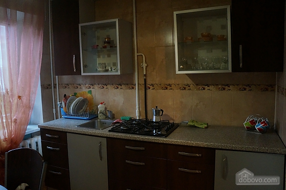 Excellent apartment in the center of Kiev, Studio (78362), 005