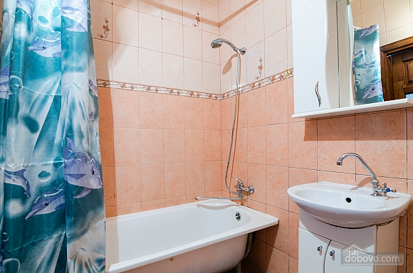 Хороша квартира в центрі, 1-кімнатна (41851), 011