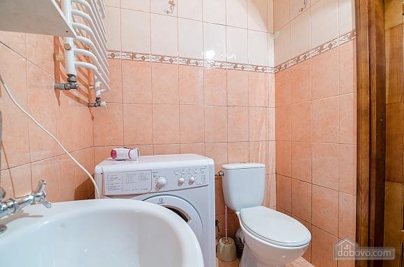 Хороша квартира в центрі, 1-кімнатна (41851), 013