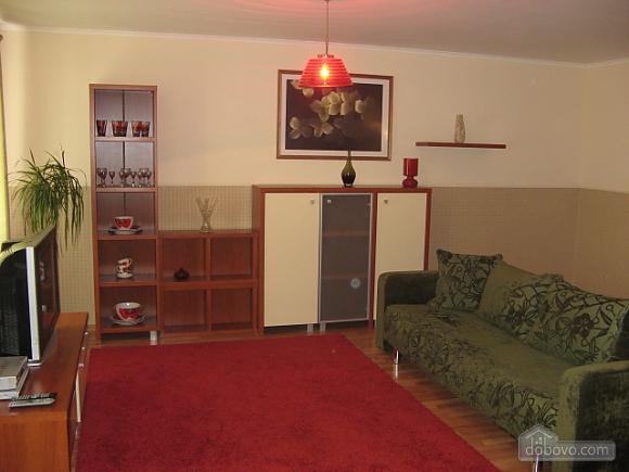 Chestnut alley apartment, Studio (46070), 001