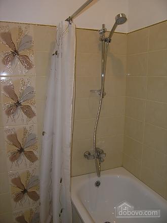 Nice apartment, Monolocale (91168), 006