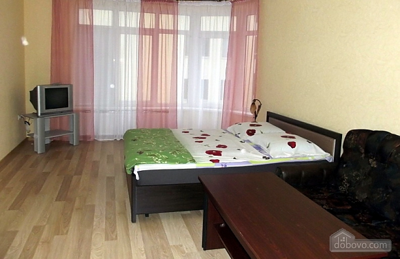 VIP apartment in the city center of Truskavets, Studio (95057), 003