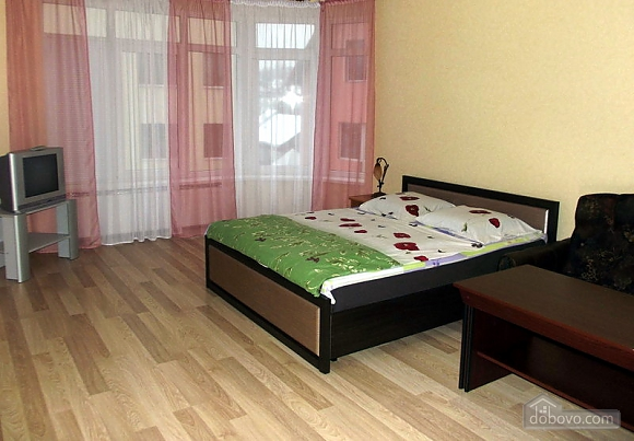 VIP apartment in the city center of Truskavets, Studio (95057), 001