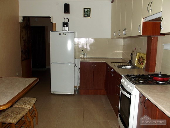 VIP apartment in the city center of Truskavets, Studio (95057), 006