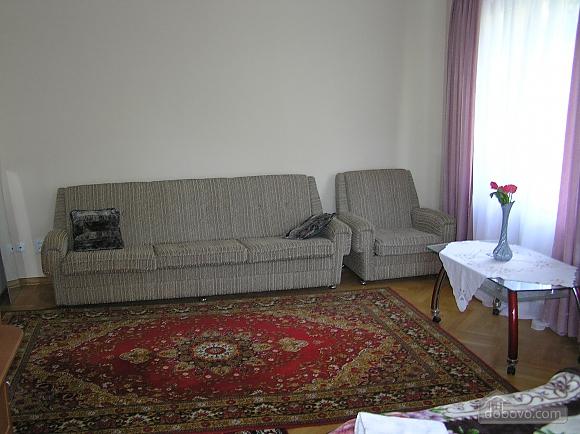 The rooms in Kamenetz-Podolsk, Studio (74650), 008