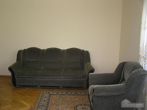 The rooms in Kamenetz-Podolsk, Studio (74650), 011