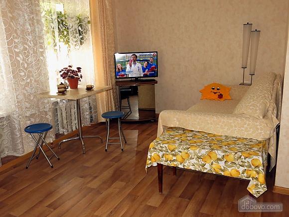 Apartment near the sea, Monolocale (98221), 003