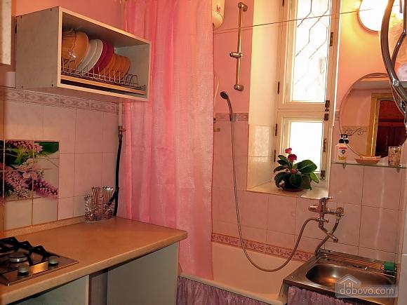 Apartment near the sea, Monolocale (98221), 007