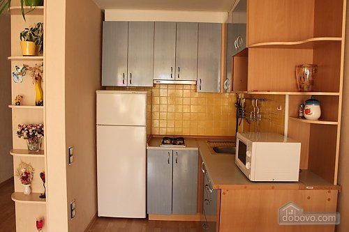 Apartment in the center of Odessa, Un chambre (79021), 010