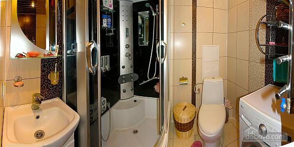Apartment in Truskavets, Studio (79397), 002