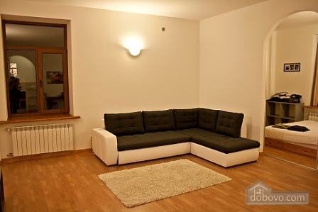 Spacious apartment in the city center, Una Camera (11914), 001