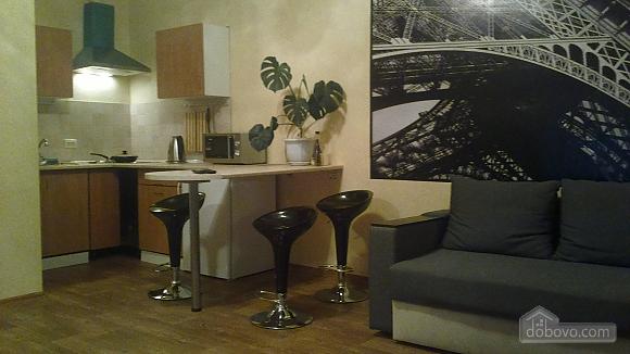 Cozy apartment in the heart of Kharkov, Studio (58858), 001