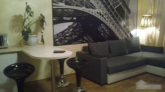 Cozy apartment in the heart of Kharkov, Studio (58858), 007