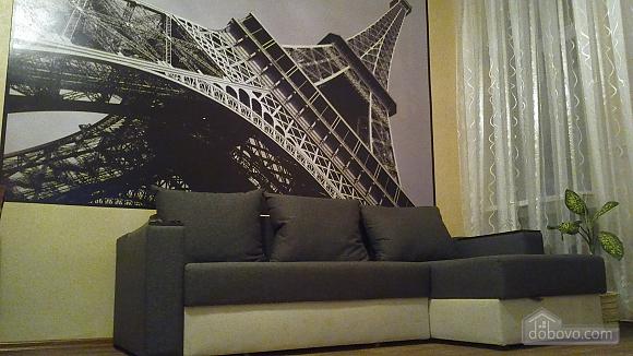 Cozy apartment in the heart of Kharkov, Studio (58858), 002