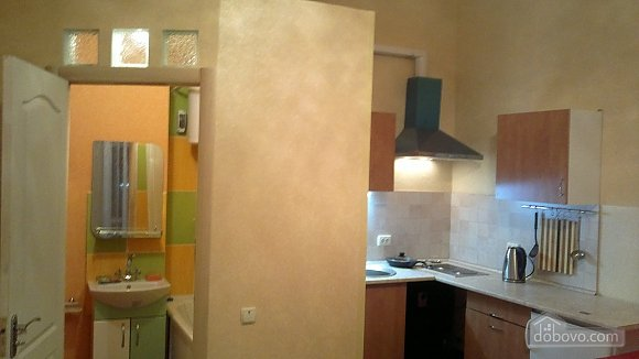 Cozy apartment in the heart of Kharkov, Studio (58858), 006
