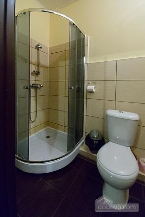 Номер у готелі, 1-кімнатна (15276), 008