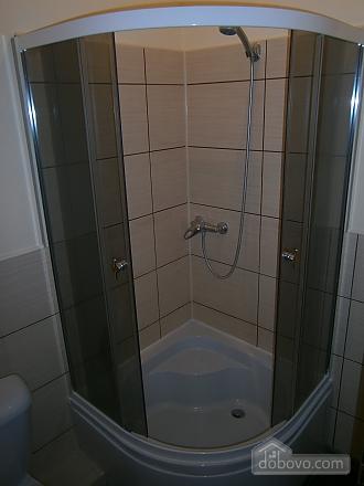 Номер у готелі, 1-кімнатна (60308), 010