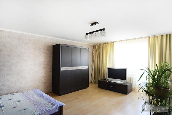 Квартира на Шовковичній, 1-кімнатна (18572), 002