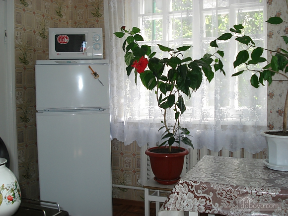 House in Odessa, Studio (86845), 017