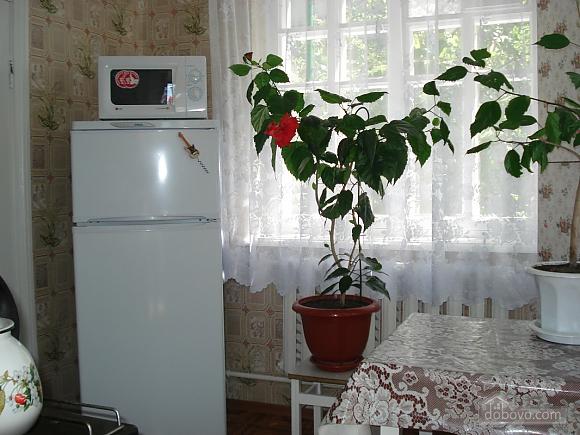 House in Odessa, Studio (86845), 018