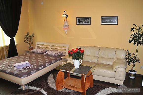 Квартира класса люкс в центре, 1-комнатная (22593), 001